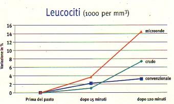 MICROONDE Leucociti