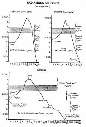 Radiazioni degli alimenti: onde umane e salute Vibraz2